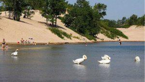water-sandbanks-FOS